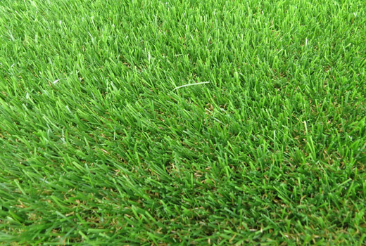 Cowdray Artificial Grass