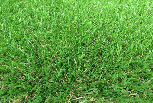 Esher Artificial Grass