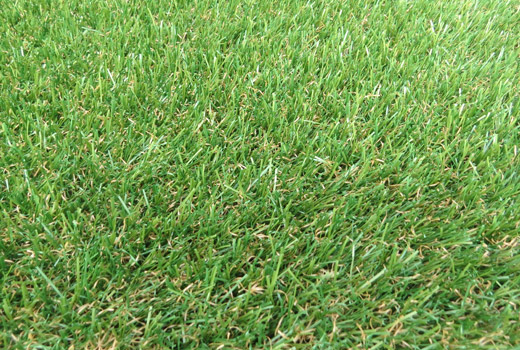 Petworth Artificial Grass